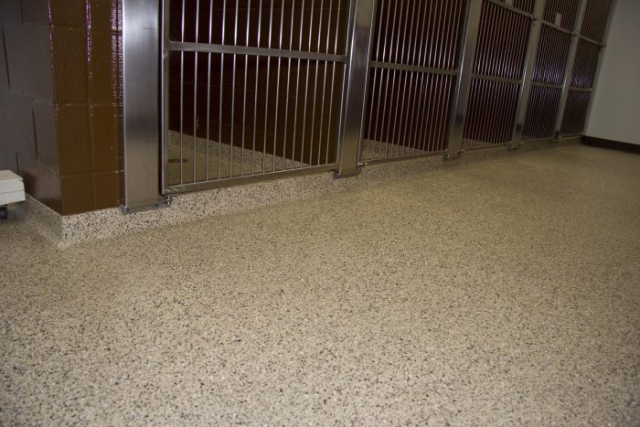 Stain resistant flooring coating